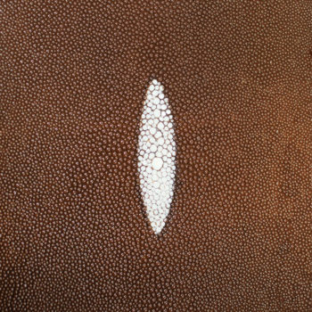 Genuine Shagreen Leather Suppliers Sample
