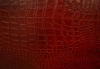 What a Croc Rojo