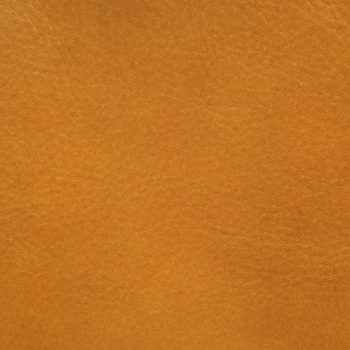 Butterscotch Leather