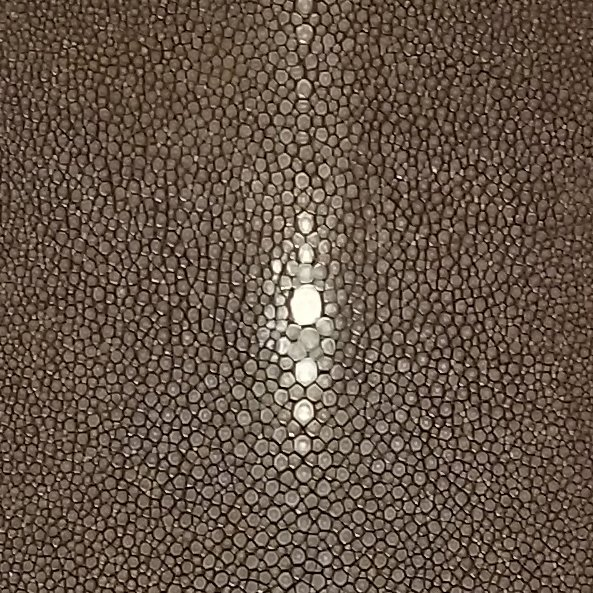 SHAGREEN STINGRAY - CHOCOLATE