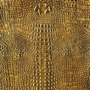 ANIMAL KINGDOM - GOLDEN PHOENIX