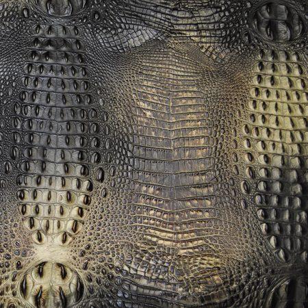 ANIMAL KINGDOM - SNEAKY SNAKE
